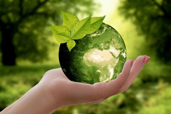 """""""Adopta tu ciudad"""", lema de ecología. Foto: Especial"""