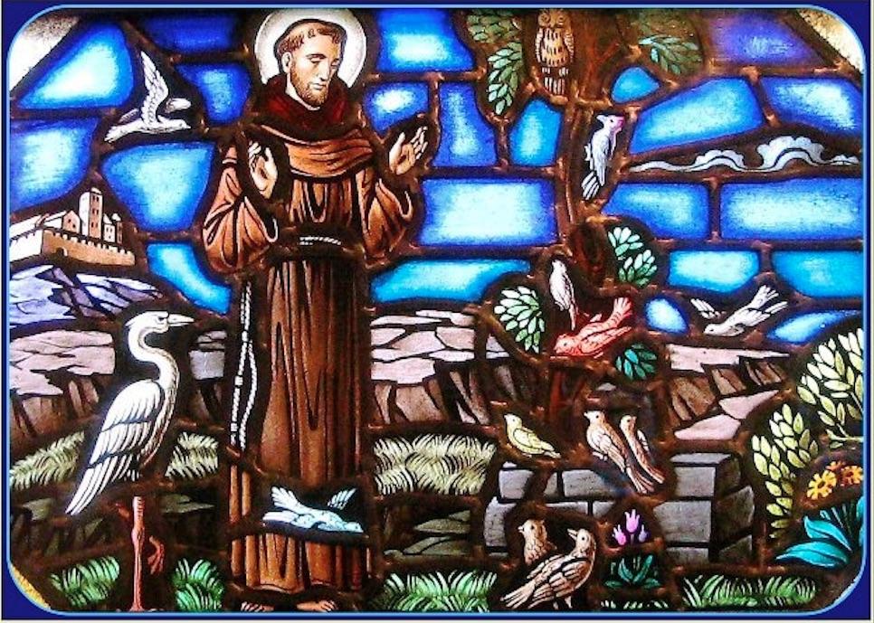 El 4 de octubre la Iglesia celebra a San Francisco de Así, patrono de la Ecología. Foto: Especial